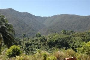 Kuba - Humboldt Nationalpark - Berglandschaft