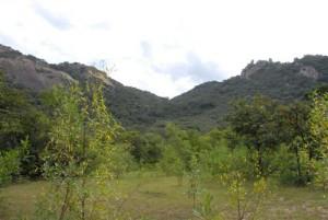 Matobo Nationalpark - Landschaft bei Lumene Falls1