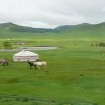 Mongolei-jurte