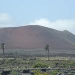 Lanzarote für Naturfreunde
