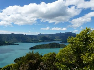 Queen Charlotte Track, Resolution Bay - Furneaux Lodge
