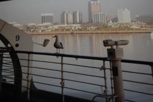 Blick auf Long Beach vom Deck der Queen Mary