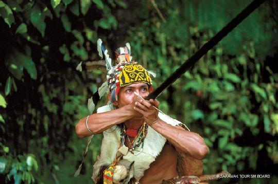 Borneo Leserreise des Reiseberichte-Blog.com