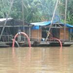 Urlaubsabenteuer - von der Dschungel Lodge zurück nach Lima