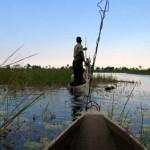 Eine Reise in das Okavango-Delta in Botswana