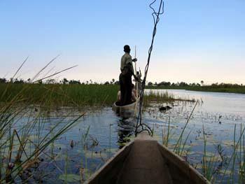 Okavango-Mokoro