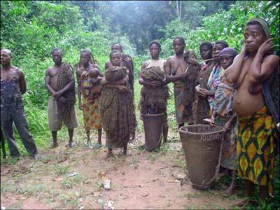 Die BAaka-Pygmäen sind die Ureinwohner des Regenwalds im Kongo