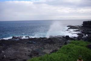 Espanola Insel Galapagos