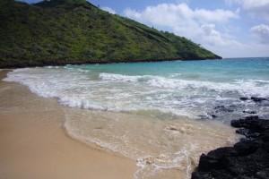 Floreana Insel Galapagos