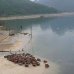 Mit Rad und Schiff in Vietnam - Von der Halong Bucht zum Mekong