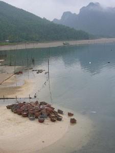 Halong Bucht Krabbenreusen