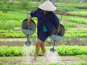 Gartendorf in Hoi An - Vietnam