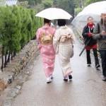 Ein Ausflug nach Sagano-Arashiyama und seinen Bambuswald