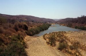 Blick auf den Sanyati River am Matusadona Nationalpark