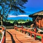 Kenia - Kili Safari & Mombasa Badeurlaub - Abenteuer Ostafrika