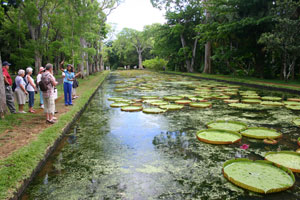 Maritim-Mauritius-Garten