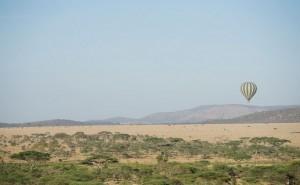 Seronera Wildlife Lodge_ Tansania