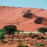 Atemberaubendes Namibia Rundreise