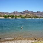 Schwimmen im Colorado