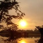 Die Siona Lodge im Cuyabeno Nationalpark im Dschungel von Ecuador