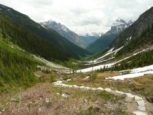 Wanderung am Arthurs Pass