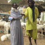 Begegnungen im Senegal