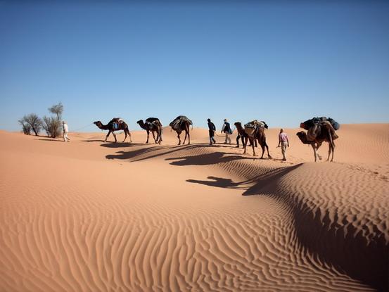 Karawane im orientalischen Erg