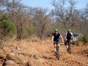 Safari mit Mountainbikes in Südafrika