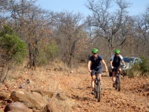 Safari mit Mountainbikes in Südafrika
