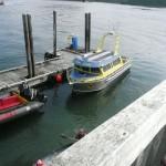 Kanada Reisebericht - Walbeobachtung bei Tofino auf Vancouver Island