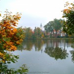 Waldland und die Entdeckung der Stille