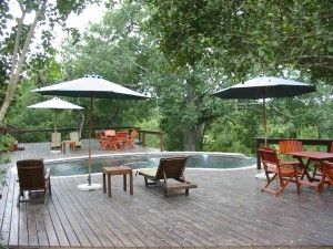 Elephant Plains Game Lodge, Sabi Sand