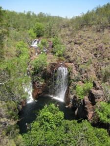 Blick auf die Florance Falls im Litchfield National Park