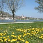 Frühling an der Donau, 1.Teil