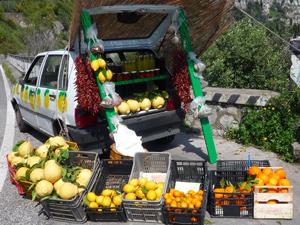 Zitronenverkauf an der Amalfiküste