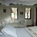 Tansania Erlebnisreise - Selous Wildreservat und Pemba Island