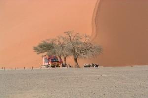 Singlereisen nach Namibia
