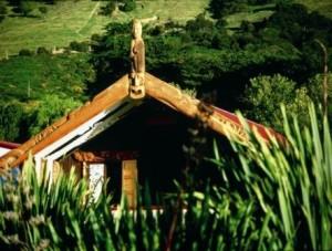 Weinregion Wairarapa