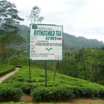 Sri Lanka Urlaub - Nuwara Eliya
