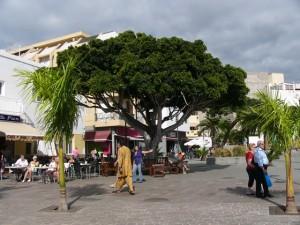 Urlaub in El Medano