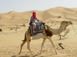 Trekking auf dem Kamel