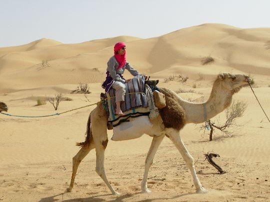 Single frauen tunesien