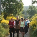 Singlereise Toskana mit Iyengar-Yoga und Wandern