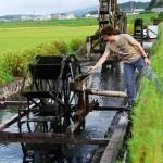 Mit diesen Rädern wurde das Wasser aus dem Fluss in die Felder gehoben.