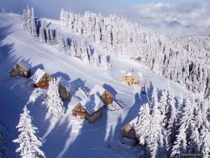 Skihütte Singlereisen
