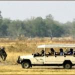 Camping Touren Botswana & Sambia Rundreisen mit Chobe, Moremi & Okavango Delta