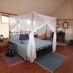 Tansania Safari mit Badeurlaub Sansibar
