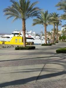 Port Ghalib tauchen