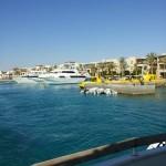 Tauchurlaub Ägypten - Tauchen in Port Ghalib / Rotes Meer