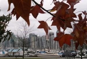 Herbststimmung im Hafen von Vancouver